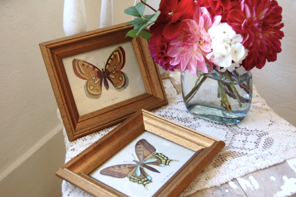 Vintage Butterfly Prints: Set of Two -- Framed